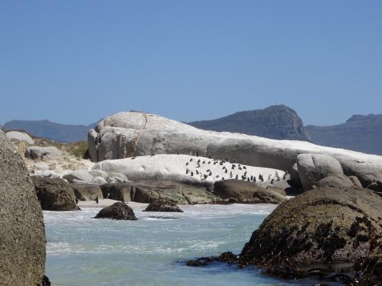Boulders beach.JPG